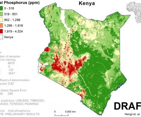 Kenya - total Phosphorus